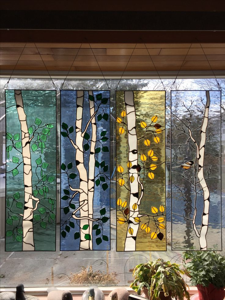 Birch trees 4 seasons