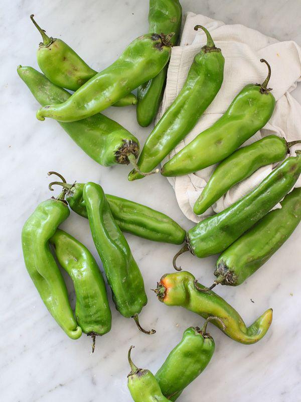Die Besten 17 Bilder Zu Veggies Auf Pinterest | Sockel, Kohlköpfe ... Gemuse Im Garten Kohlblatter Tipps
