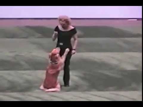 """HAPPIEST DOG EVER - Dog and owner perform a cute dance routine to """"You're the One That I Want"""" from Grease.  MUST SEE.  Guaranteed to have you smiling."""