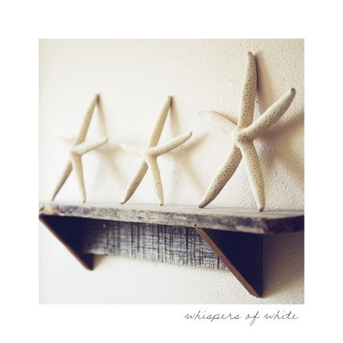 Love this for my beach theme bedroom :) Simple and gorgeous.