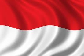 Ini bendera Indonesia. Merah dan putih. Merah = berani. Putih = suci.
