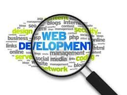 The web development services is quite popular among other web development