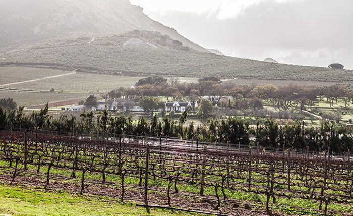 vondeling Wine Estate