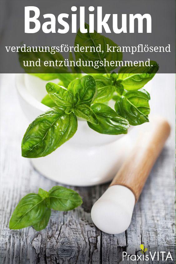 Basilikum wird nicht nur zum Würzen viele Gerichte benutzt, sondern es lindert auch Appetitlosigkeit, Nervosität, Magenverstimmungen und Blähungen.