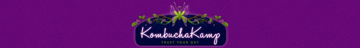 Welcome to Kombucha Kamp!  Extremely informative site for homemade Kombucha...easier than I thought to make