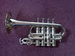 Piccolo trumpets play an octave higher than a standard trumpet.