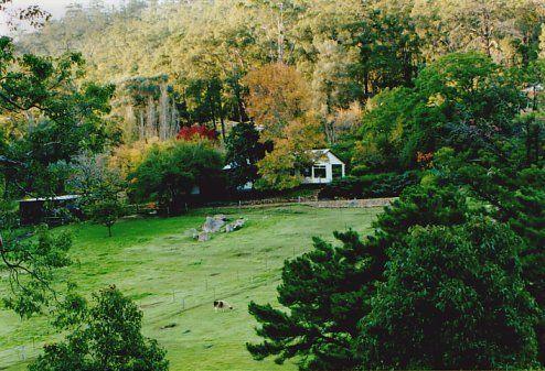 South Glen Estate - Llama picnics and B & B, Perth Western Australia