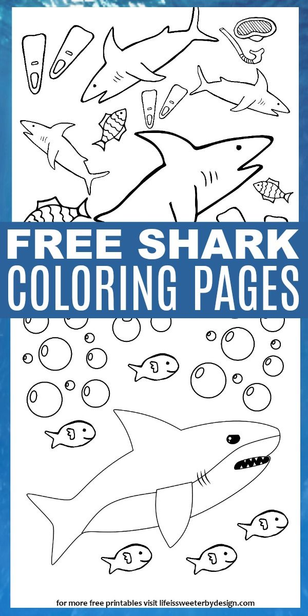 These Free Printable Shark Color Pages Are Perfect For Shark Week Or Anytime Four Different Shar Shark Coloring Pages Shark Week Crafts Shark Crafts Preschool