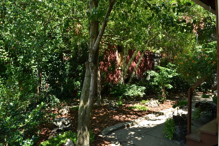 24 best grassless front yards  grasslessyard images on pinterest
