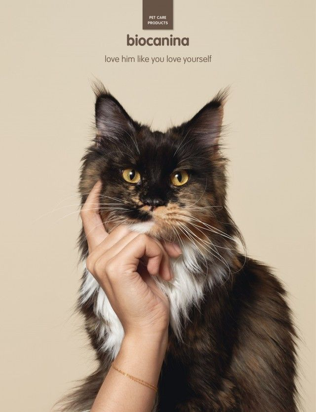 Creative And Amazing Advertisements