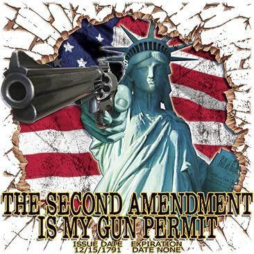 Statue of Liberty 2nd Amendment.