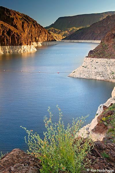 Lake Mead, Lake Mead National Recreation Area, Mojave Desert, Nevada; photo by Ron Niebrugge