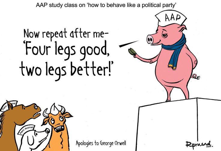 AAP study class