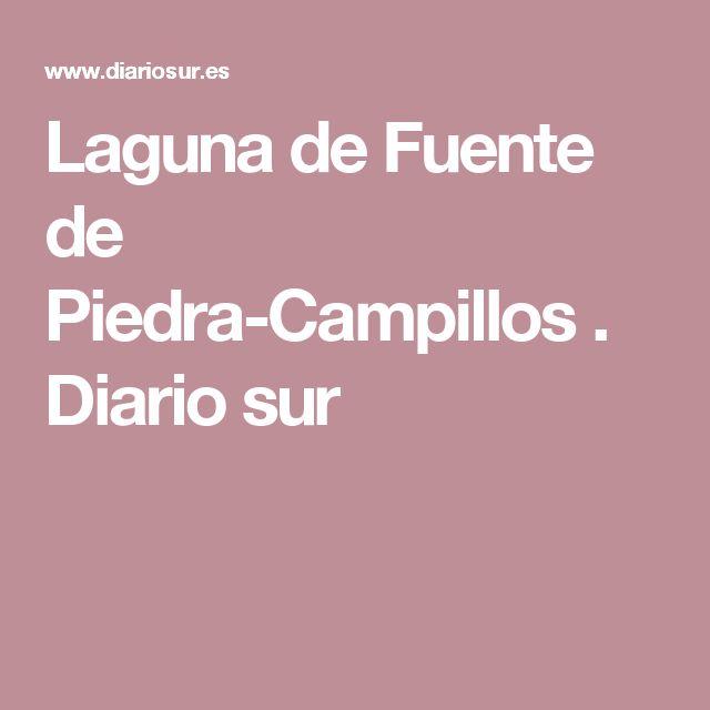 Laguna de Fuente de Piedra-Campillos . Diario sur