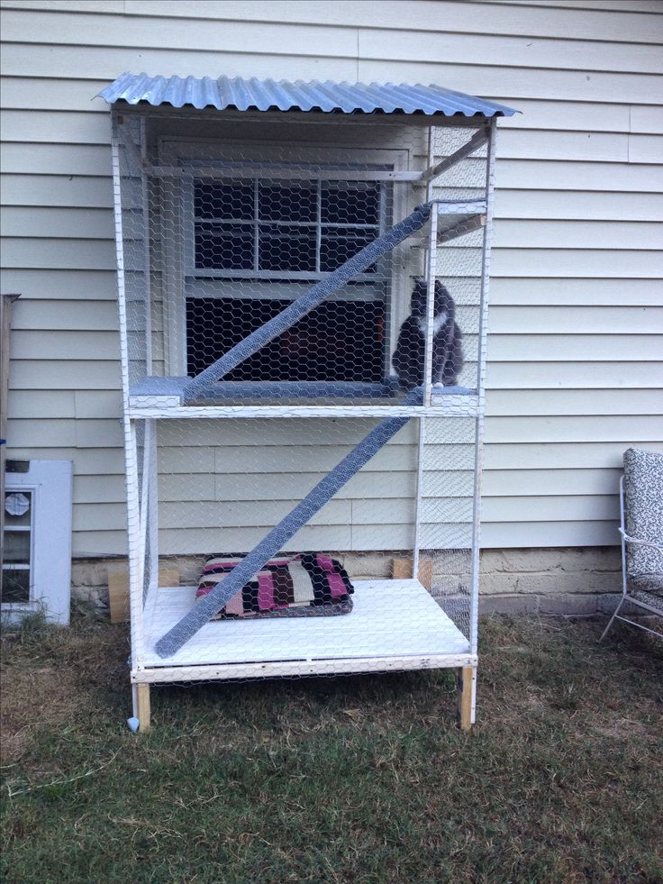 Our Catio. A safe outdoor inclosure for indoor cats.
