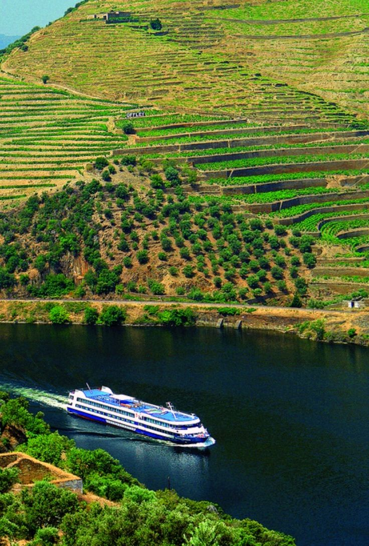 Douro | #Dourovalley | #Portugal #Winehotel