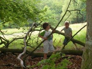 Wat moeten kinderen voor hun 12e in de natuur gedaan hebben?