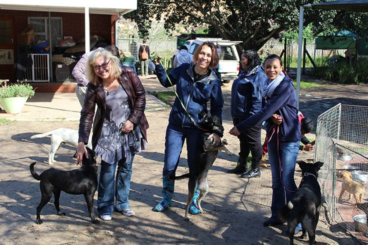 Oxbridge Academy helping out at the Animal Welfare Society in Stellenbosch for Mandela day