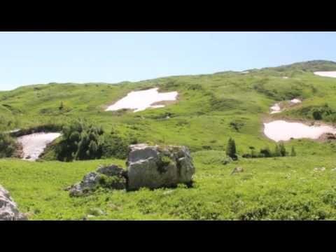 Волшебный мир Кавказского заповедника