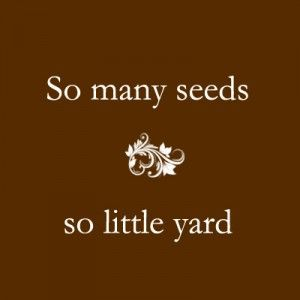 Grow your own produce regardless of your space… Grow heirloom organic seed that is free of GMs, chemical-pesticides, and BIGagra's BS… Just Grow it!