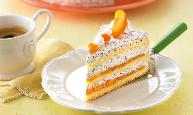 Aprikosen-Mohn-Quarksahne-Torte - Quark-Sahne-Torte mit Mohn-Back und Aprikosen in 3 Schichten und Aprikosen und Baiser-Tupfen als Dekoration