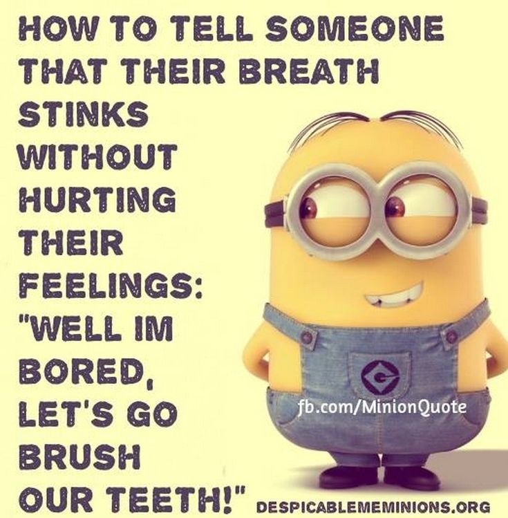 1000+ images about love those minions! ! on Pinterest | Funny Minion ...