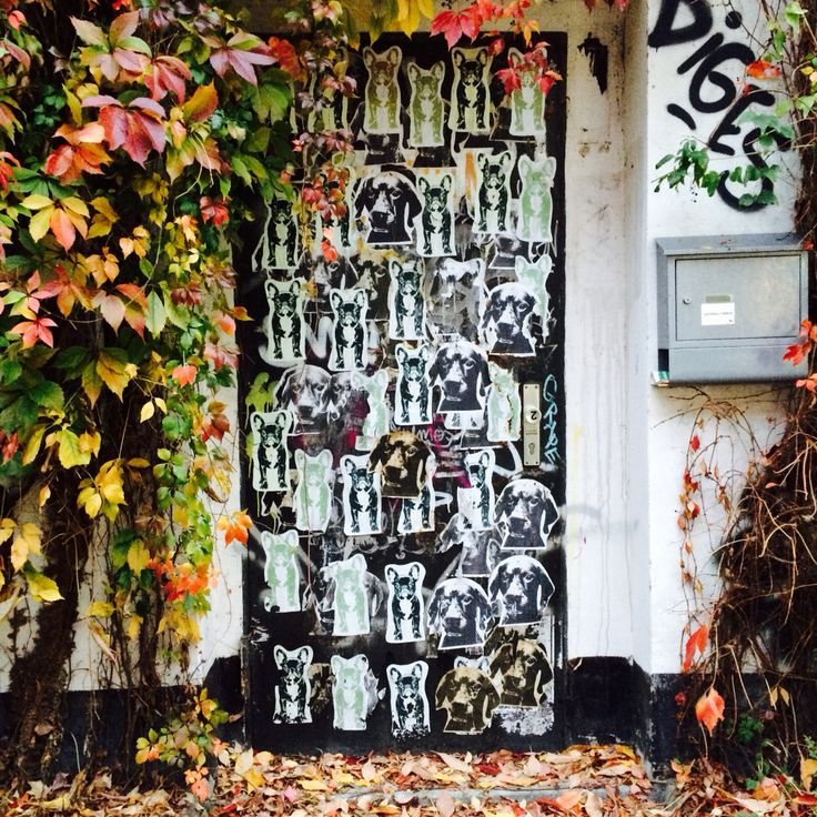 A Secret Backdoor, Berlin