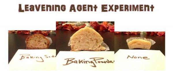 Extreme Lesson Plan Make Over: Leavening Agents | FamilyConsumerSciences.com