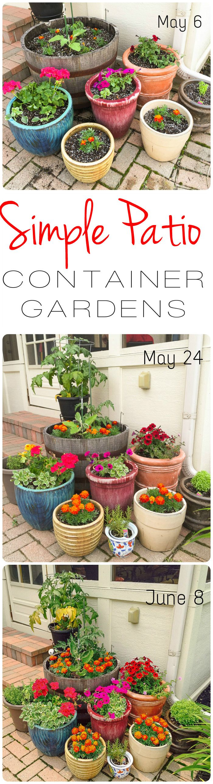 Simple Patio Container Gardens | Home & Plate | www.homeandplate.com | In a month's time, your container garden can go from now to WOW!