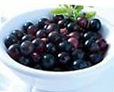 Acai berry nutrition facts-461