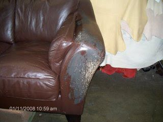 Cuidados de couro, Reparação e Restauração: gato arranha sobre Mobiliário de couro