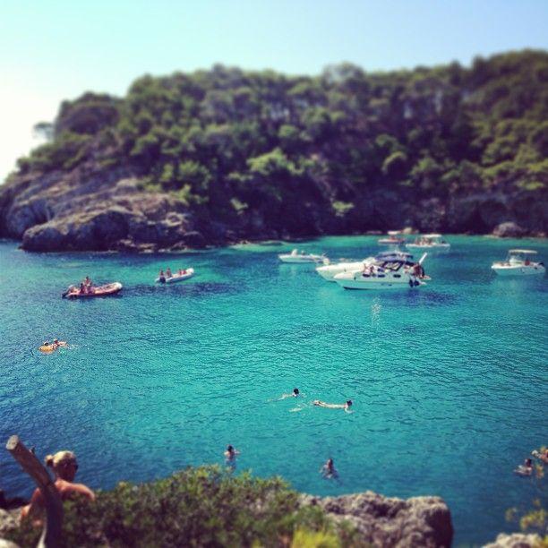 Isole Tremiti nel Isole Tremiti, Puglia www.apuliadestination.com