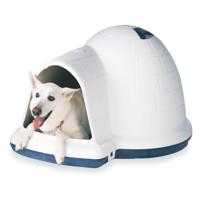 igloo dog house petsmart 28 images dog houses wooden With petsmart dog igloo