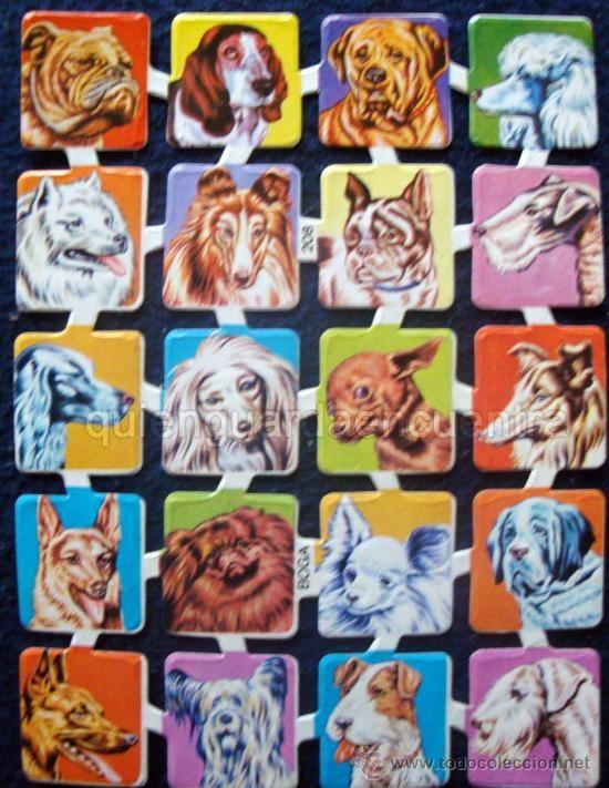 Cromos troquelados recortados de la palma o picar Boga nº 208 con brillo y relieve. Razas de perros