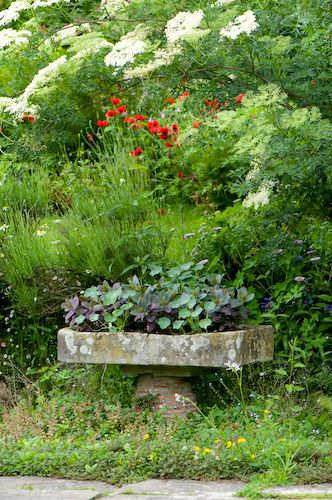 Marvelous  Best Images About Great Dixter On Pinterest  Gardens England  With Foxy Stone Planter Great Dixter Sussex England Early June With Attractive Garden Sun Loungers Recliners Also St John Garden Centre In Addition Haskins Garden Centre Snowhill And New Jade Garden As Well As Garden Serenity Additionally Garden Railway Layouts From Pinterestcom With   Foxy  Best Images About Great Dixter On Pinterest  Gardens England  With Attractive Stone Planter Great Dixter Sussex England Early June And Marvelous Garden Sun Loungers Recliners Also St John Garden Centre In Addition Haskins Garden Centre Snowhill From Pinterestcom