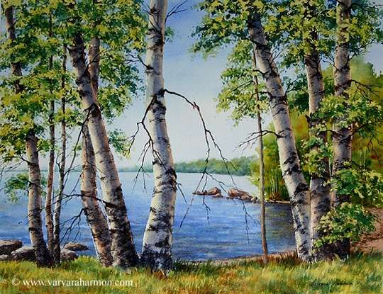 Birch Trees on Long Lake, Original Landscape watercolor painting by Varvara Harmon