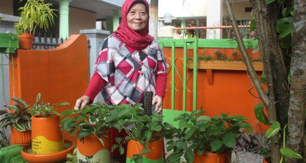 Yeni Setia Budi : Peduli Lingkungan, Bersihkan Sungai dan Hijaukan Pekarangan Rumah  #WanitaSukabumi #LingkunganHidup