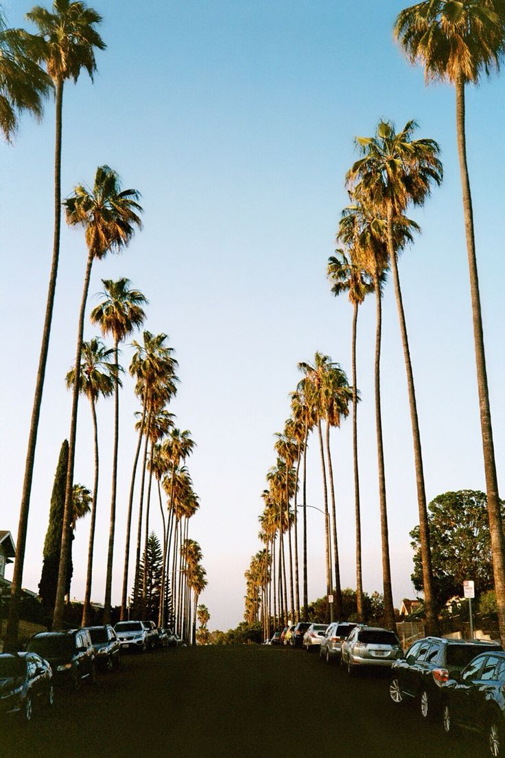 how to travel from los angeles to palm springs