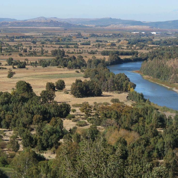 Donde Confluye el Río Claro con el Río Maule