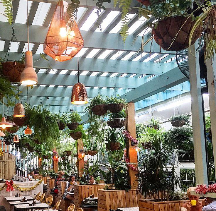 Social Brew, Burleigh, Gold Coast Cafe