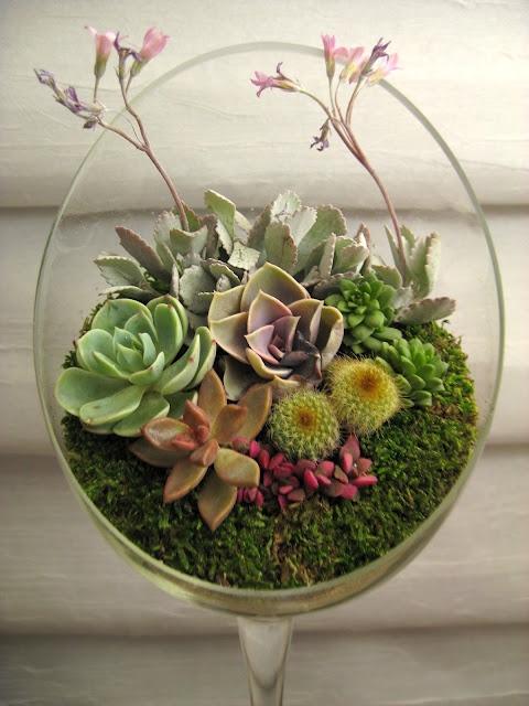 Very Pretty Succulent Arrangement In A Unique Glass