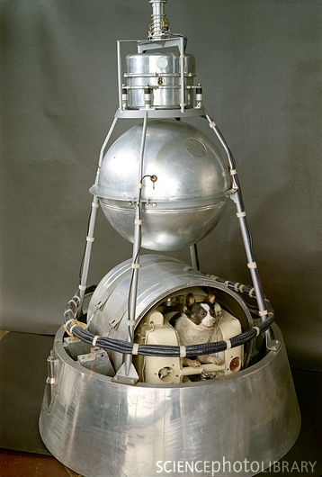 Sputnik II - launched Laika, Earth's first Space Traveler, into Space.