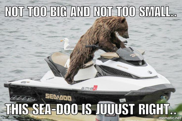 ⚓Long Point Boaters⚓ on   SEADOO   Jet ski, Boat humor ...