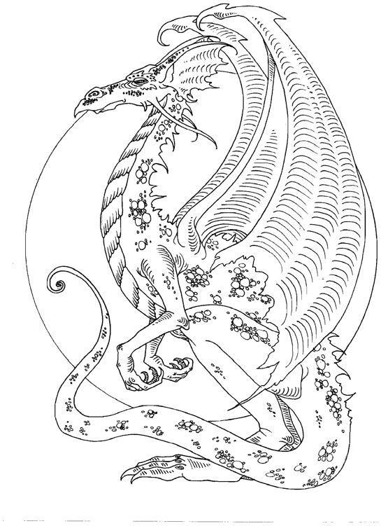 Amy Brown dragon Adult Colouring Dragons Lizards