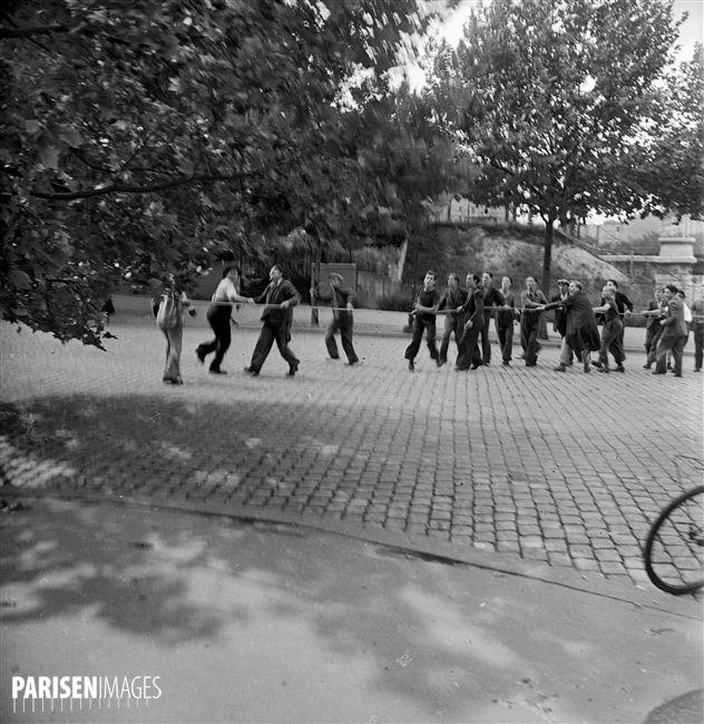 Guerre 1939-1945. Libération de Paris. Abattage d'un arbre pour la construction d'une barricade, porte de Châtillon. Paris (XIVème arr.), 24 août 1944.