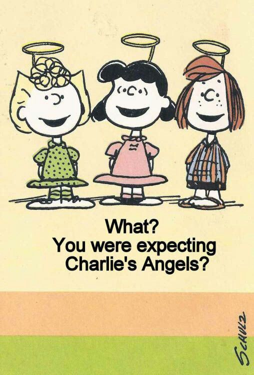 Peanuts Girls - Sally, Lucy & Peppermint Patty - What were you expecting?  Charlie's Angels?  Funny 70s TV