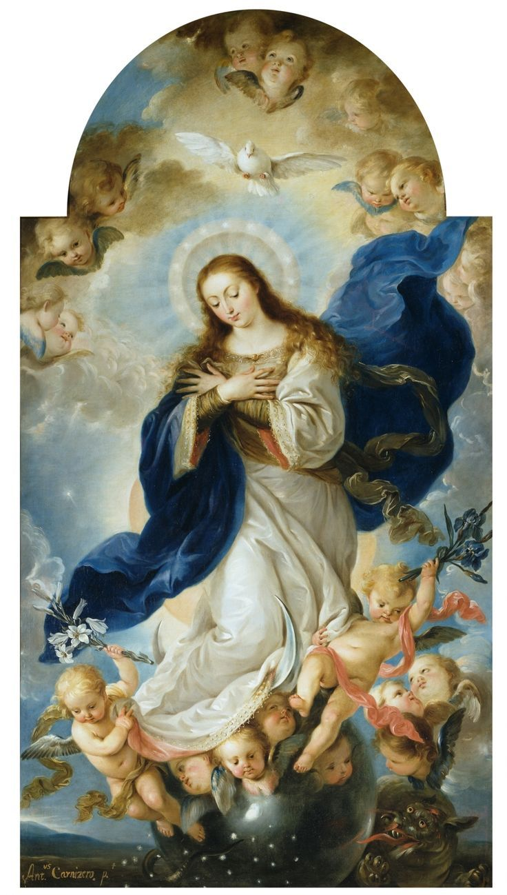 Image result for how to say the immaculate conception chaplet