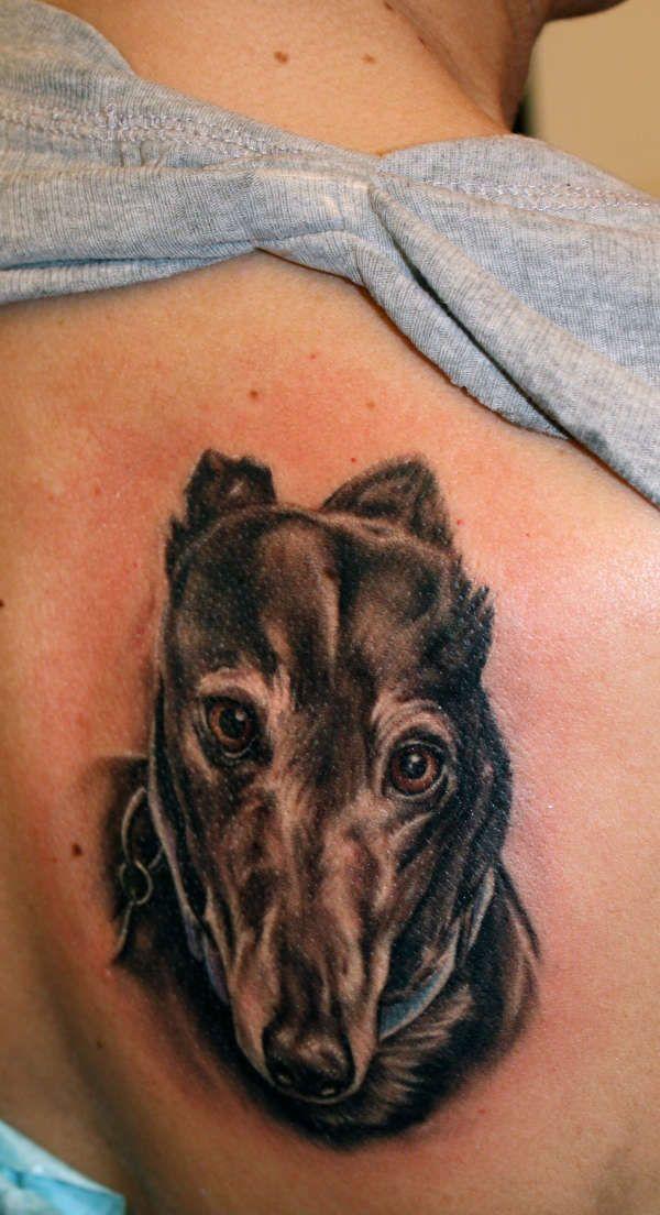 karla's greyhound tattoo