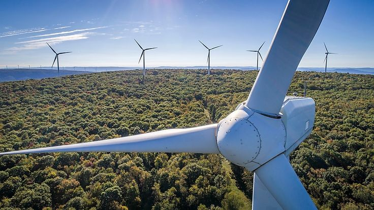 Lower carbon fuels shell united kingdom hydrogen fuel