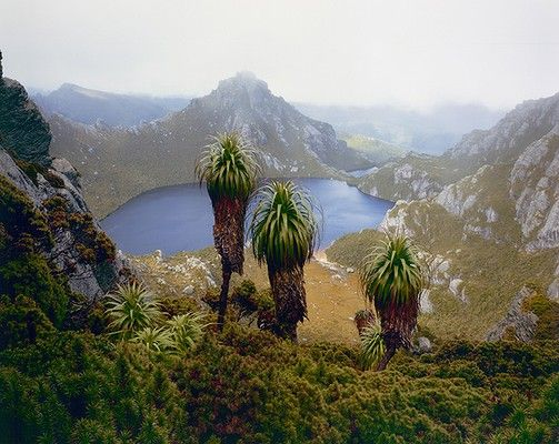 A sample of the celebrated late photographer Peter Dombrovskis wilderness collection. His wife has sold 3000 of his images to the National Library of Australia for preservation.